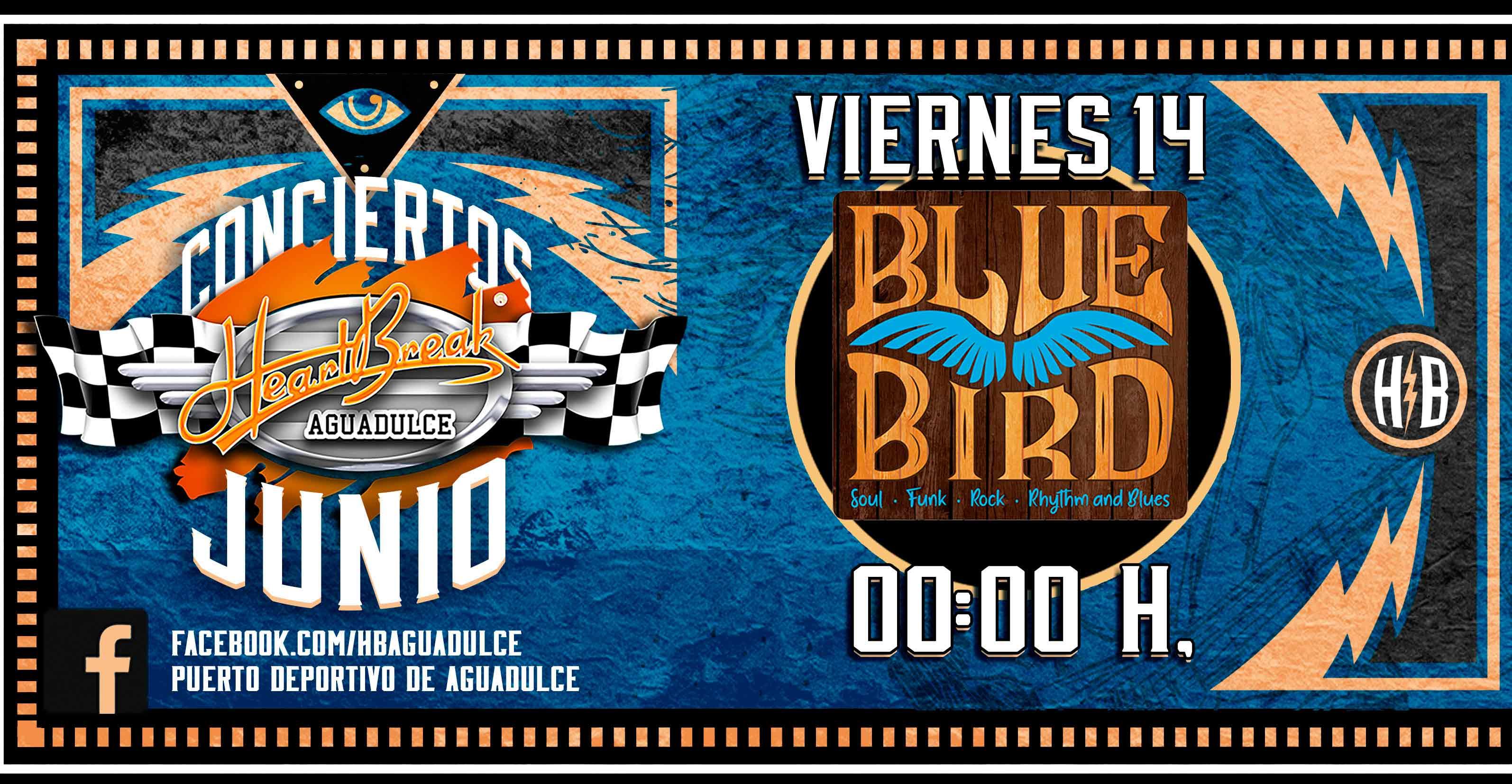 Concierto de Blue Bird Band