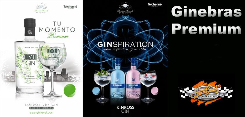 Gin Premium 4,50 €